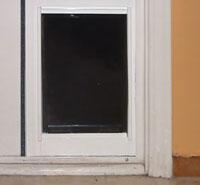 The dog door